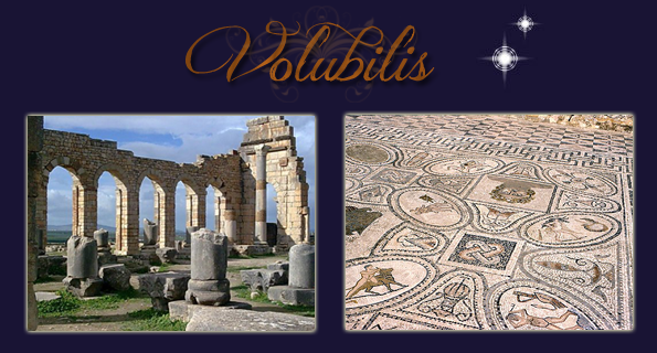 volubilis-copie